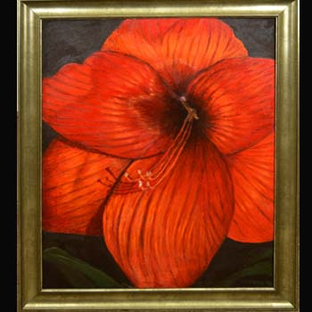 Big Red, Floral oil painting by Carol S Sakai, artist