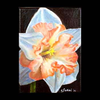 Double Daffodil, Floral Oil Painting created by Carol S Sakai