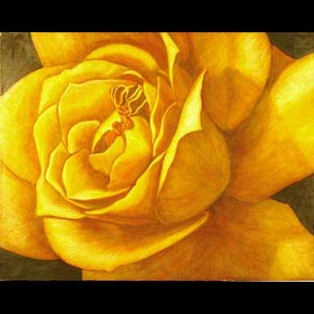 Yellow Rose, Floral Oil painting created by Carol Sakai